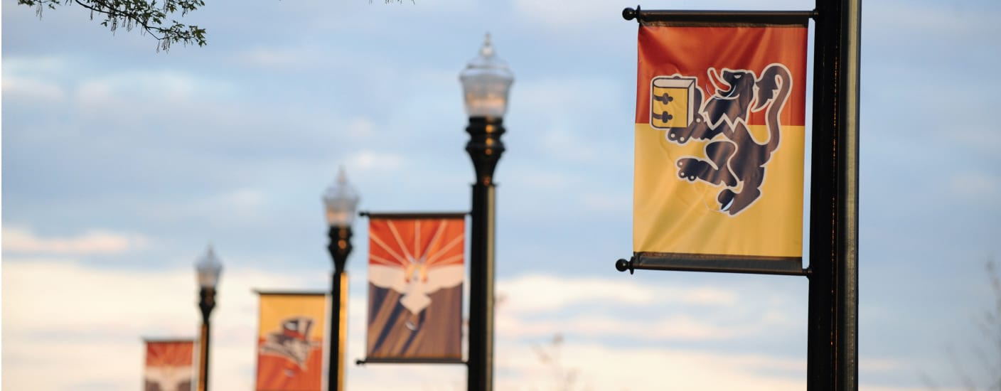 Photo of Duquesne Banners