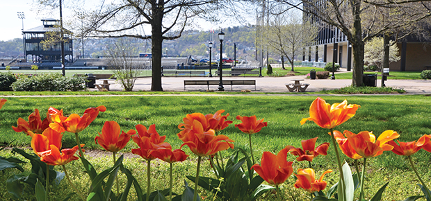 Flowers on Duquesne's campus