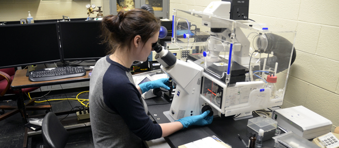 Student working in the lab