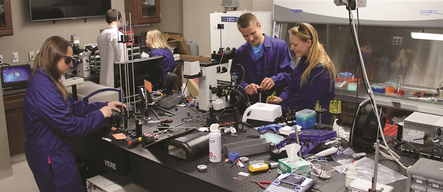 Students working in biomedical engineering lab