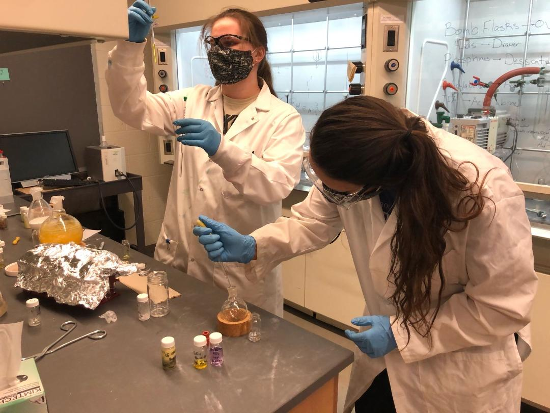 ACS Students Performing Undergraduate Research