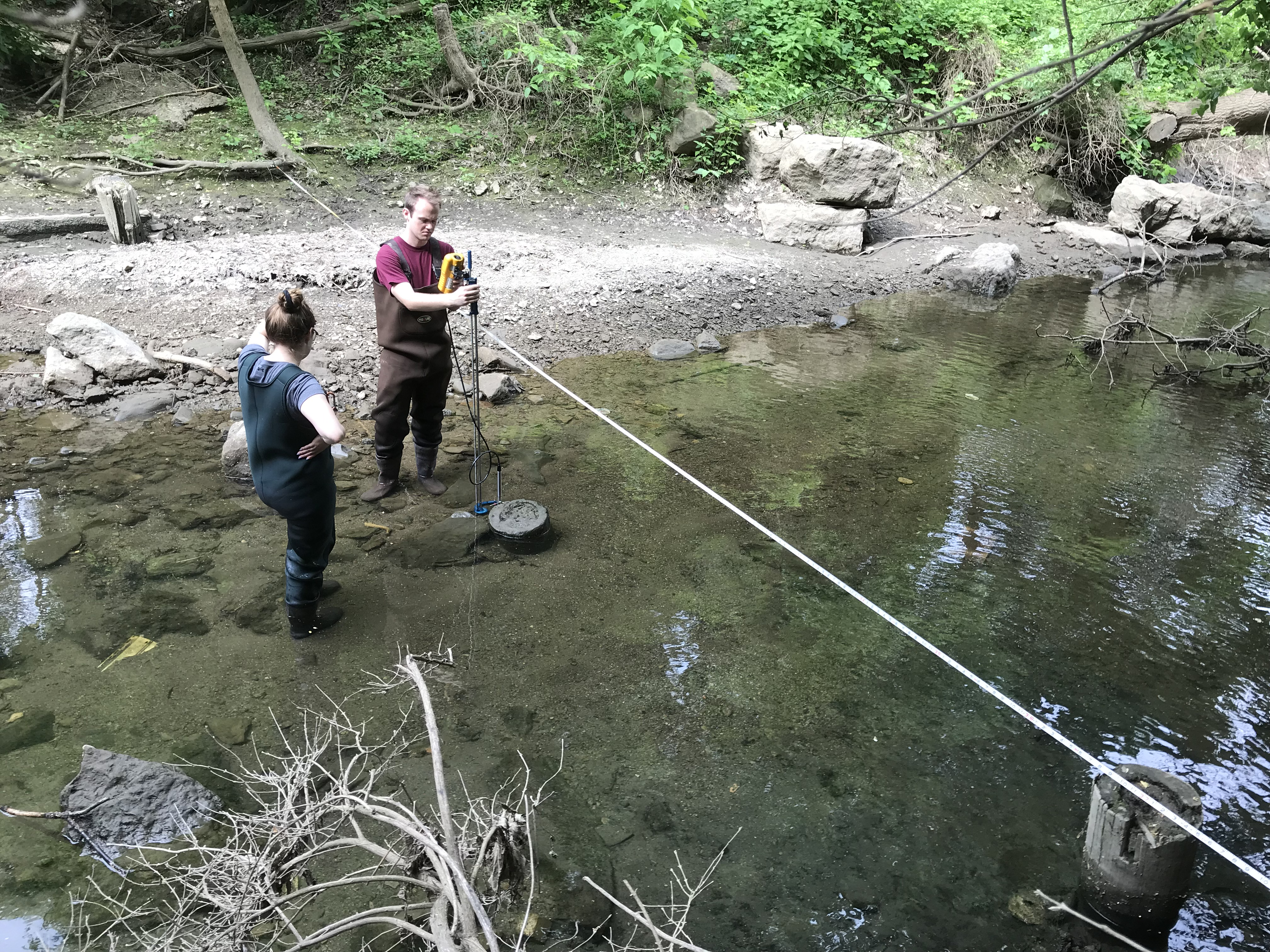 Students measuring stream discharge