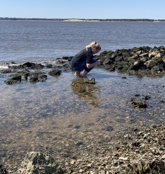 Student Observing Mussels in Tidepool