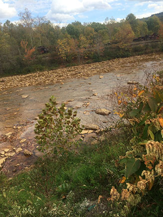 Blacklick Creek (BL)