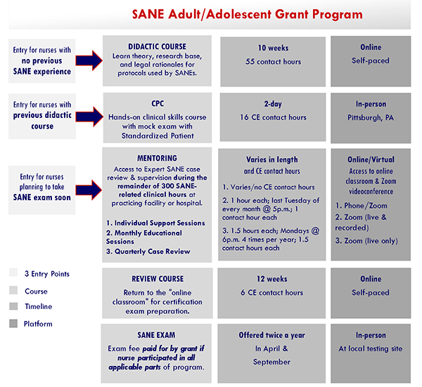 Workflow graphic to illustrate different entry paths for SANE program