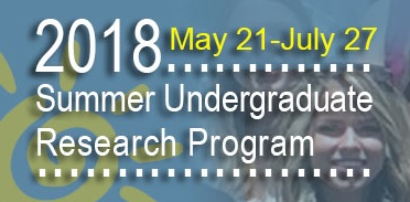 2018 Summer Undergraduate Research Program